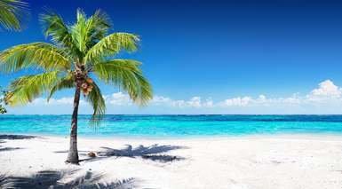 Grand Bahía Príncipe Jamaica en Todo Incluido