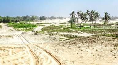 Viaje a Senegal y Naturaleza del Norte