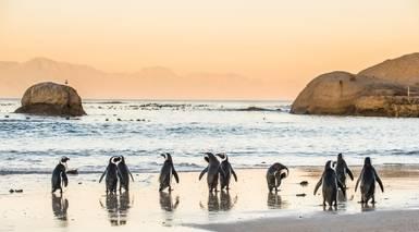 Sudáfrica Esencial con Kruger - Grandes Viajes
