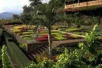 Hoteles en Madeira