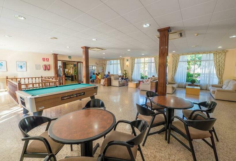 Camera Hotel Checkin Pineda Pineda de Mar