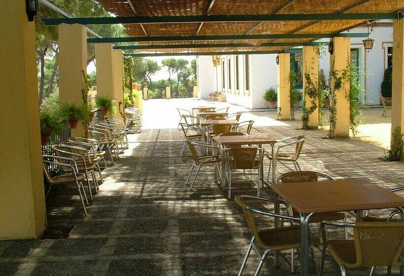 Hotel oromana in alcala de guadaira starting at 19 destinia - Piscina cubierta alcala de guadaira ...
