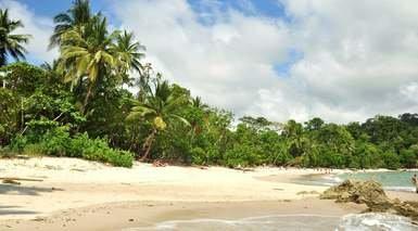 Costa Rica Básica, Tortuguero y Playa Manuel Antonio