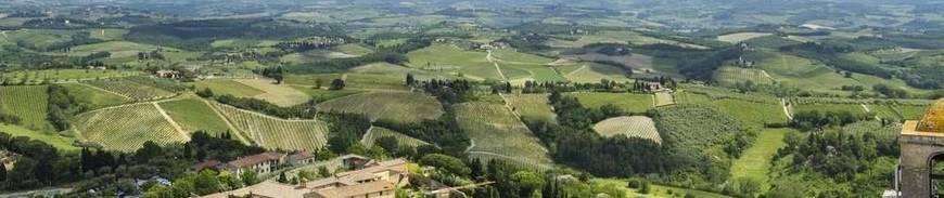Viaje organizado a la Toscana
